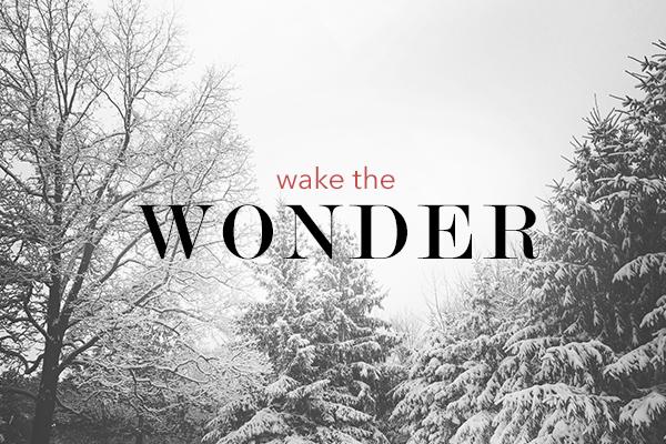 Wake the Wonder – Wk. 1